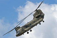 Chinook returns